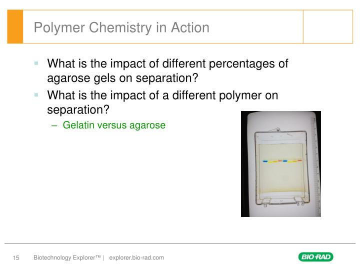 Polymer Chemistry in Action