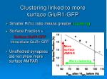 clustering linked to more surface glur1 gfp