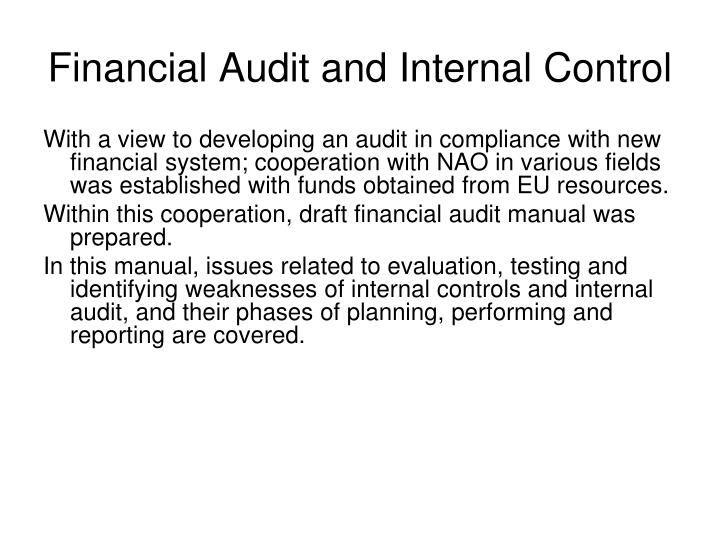 Financial Audit and Internal Control