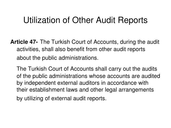 Utilization of Other Audit Reports