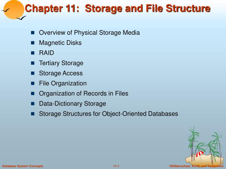 chapter 11 storage and file structure n.