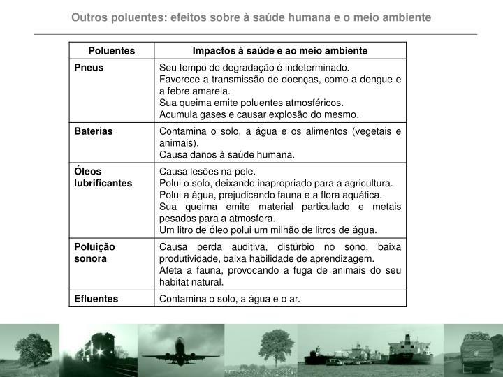 Outros poluentes: efeitos sobre à saúde humana e o meio ambiente