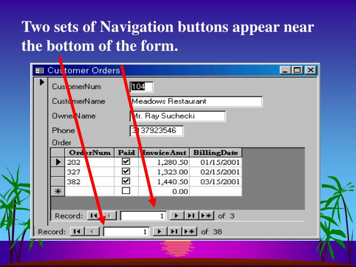 Two sets of Navigation buttons appear near the bottom of the form.