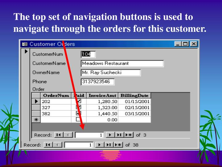 The top set of navigation buttons is used to navigate through the orders for this customer.