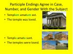participle endings agree in case number and gender with the subject2
