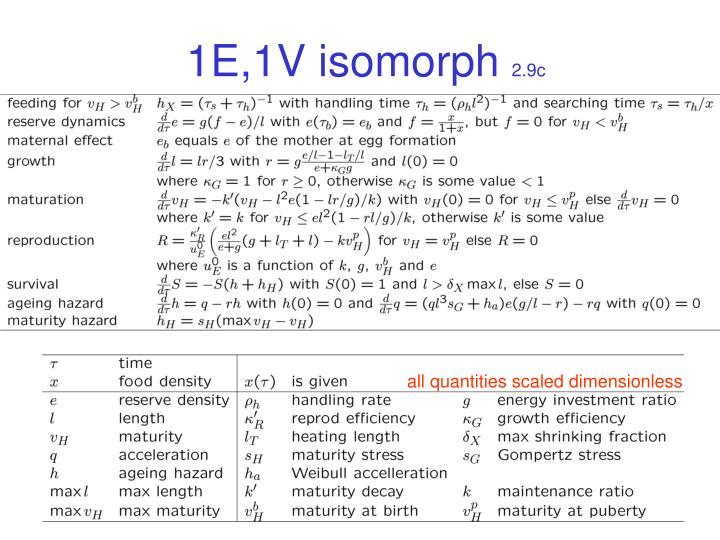 1E,1V isomorph