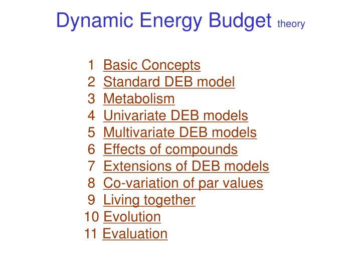Dynamic Energy Budget