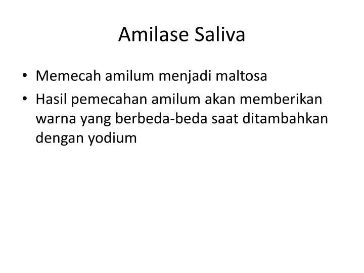 Amilase