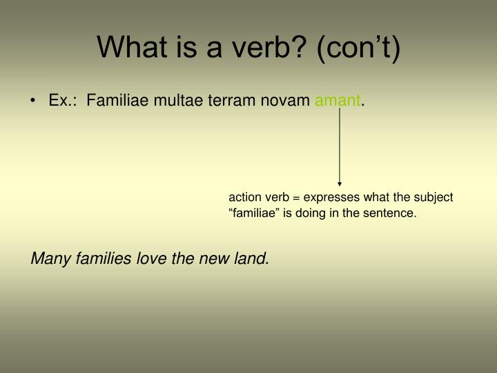 What is a verb con t