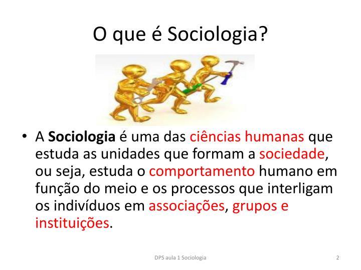 O que sociologia