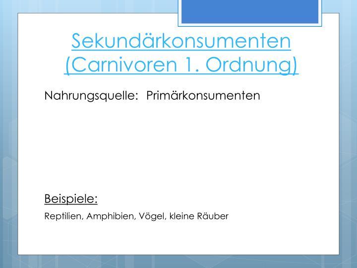 Sekundärkonsumenten (