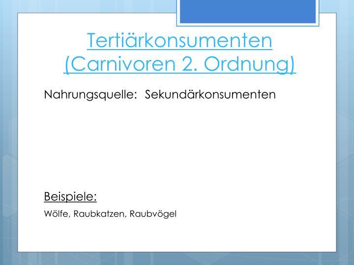 Tertiärkonsumenten (