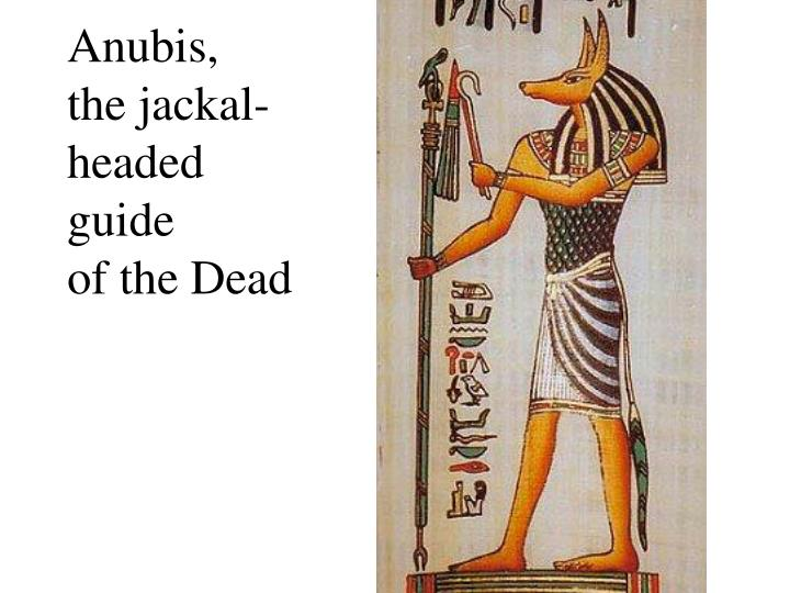 Anubis the jackal headed guide of the dead