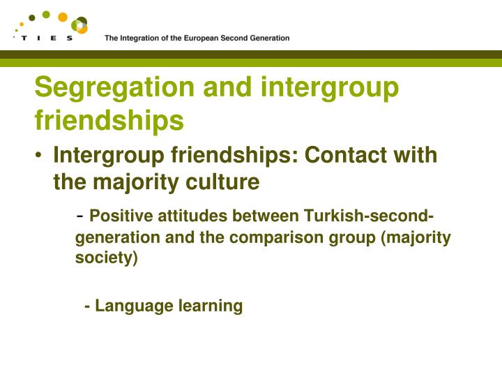 Segregation and intergroup friendships