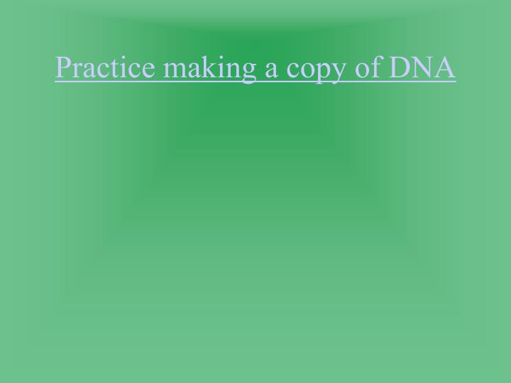 Practice making a copy of DNA