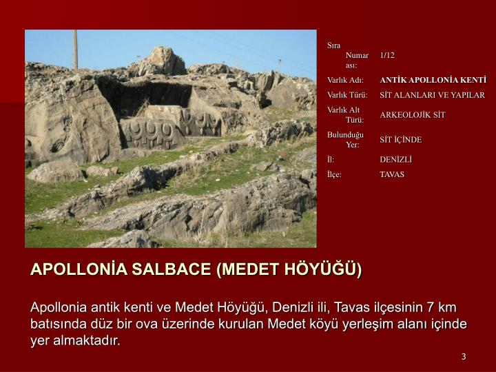 APOLLONİA SALBACE (MEDET HÖYÜĞÜ)