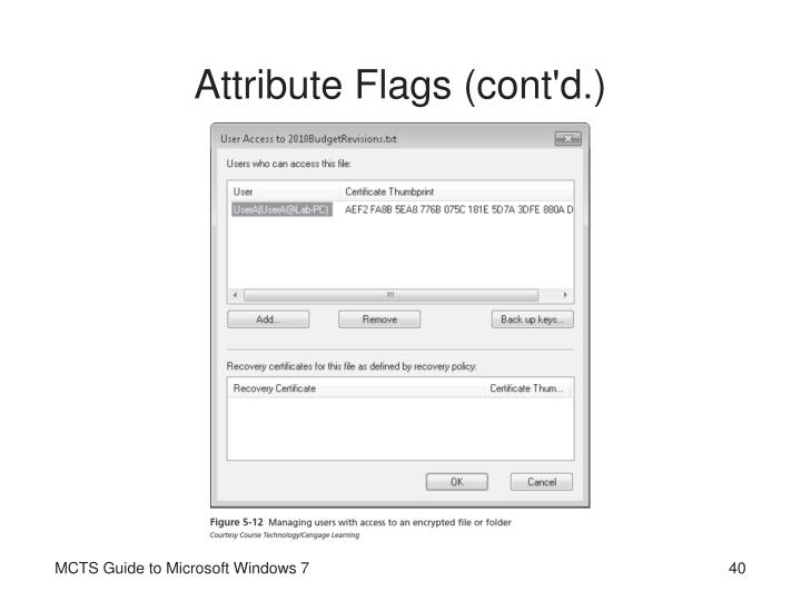 Attribute Flags (cont'd.)