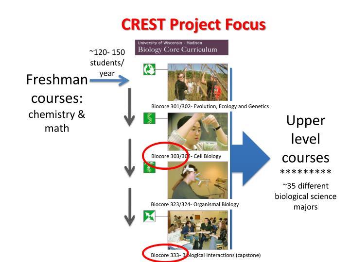 CREST Project Focus