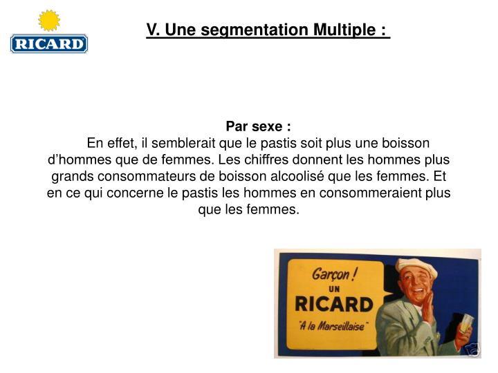 V. Une segmentation Multiple: