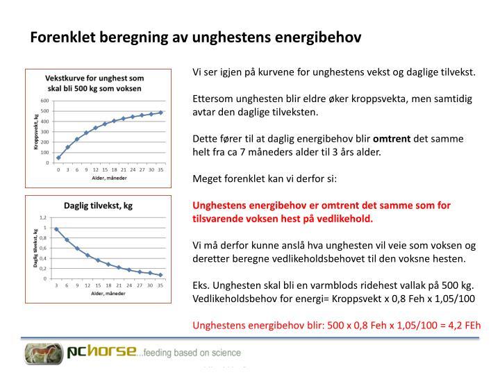 Forenklet beregning av unghestens energibehov