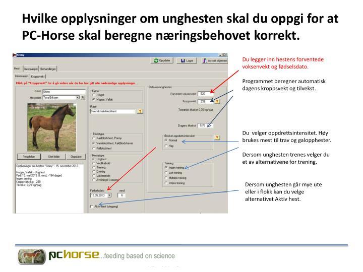Hvilke opplysninger om unghesten skal du oppgi for at PC-Horse skal beregne næringsbehovet korrekt.