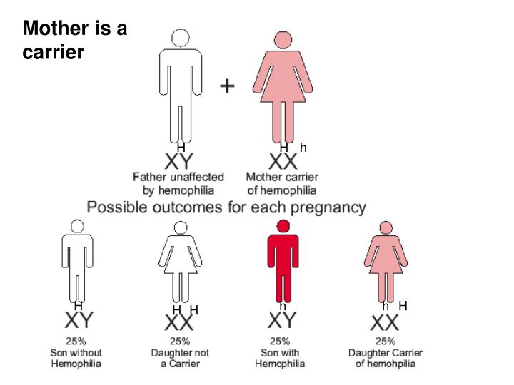 Mother is a carrier