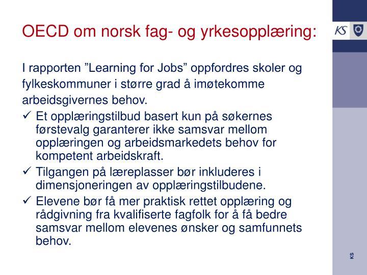 OECD om norsk fag- og yrkesopplæring: