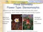 floral symmetry flower type stereomorphic