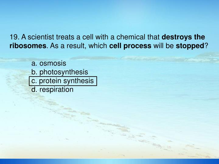 19. A scientist treats a cell with a chemical that