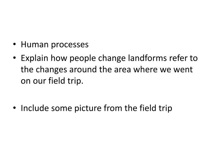 Human processes