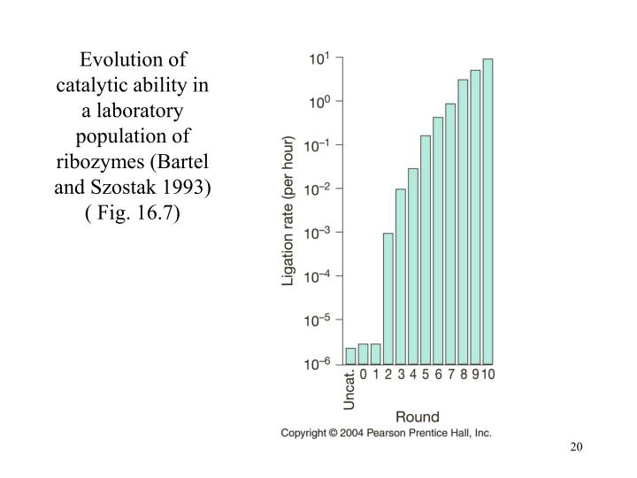 Evolution of catalytic ability in a laboratory population of ribozymes (Bartel and Szostak 1993) ( Fig. 16.7)