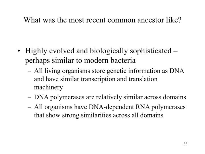 What was the most recent common ancestor like?