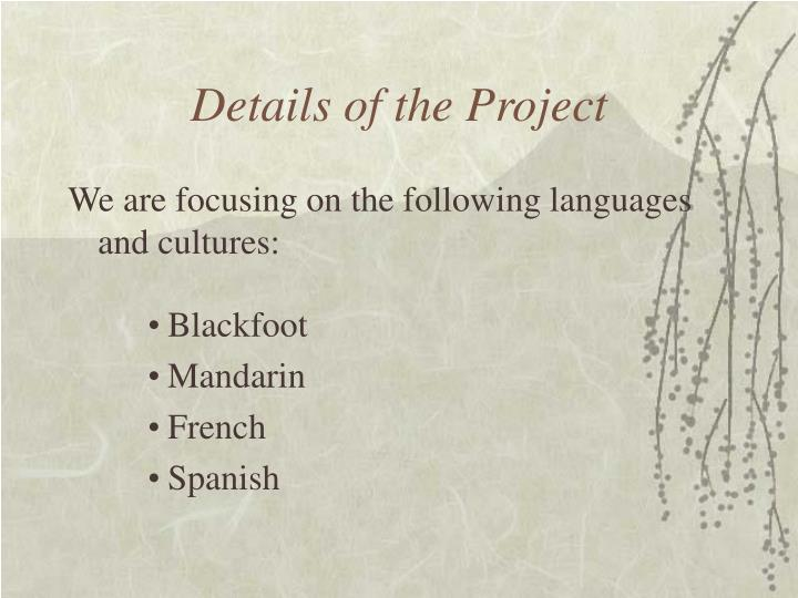 Details of the Project