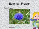 estonian flower