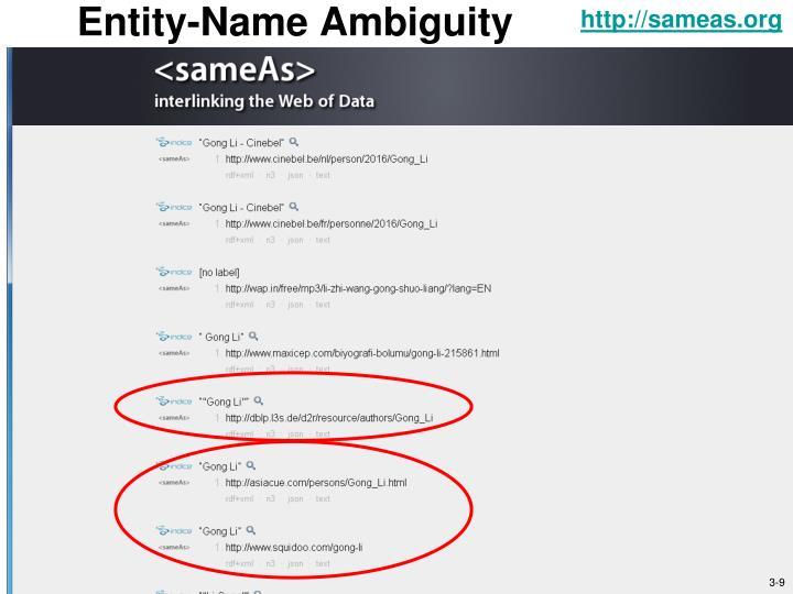 Entity-Name Ambiguity