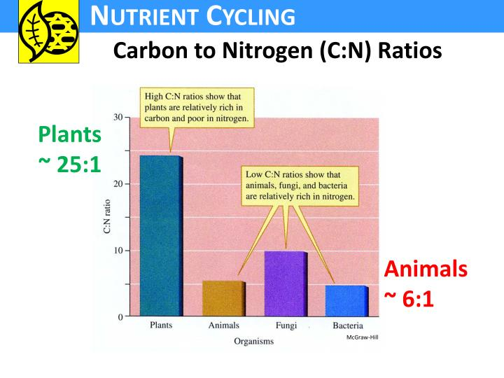 Carbon to Nitrogen (C:N) Ratios