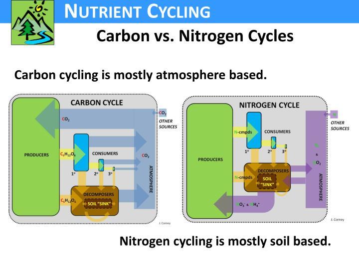 Carbon vs. Nitrogen Cycles