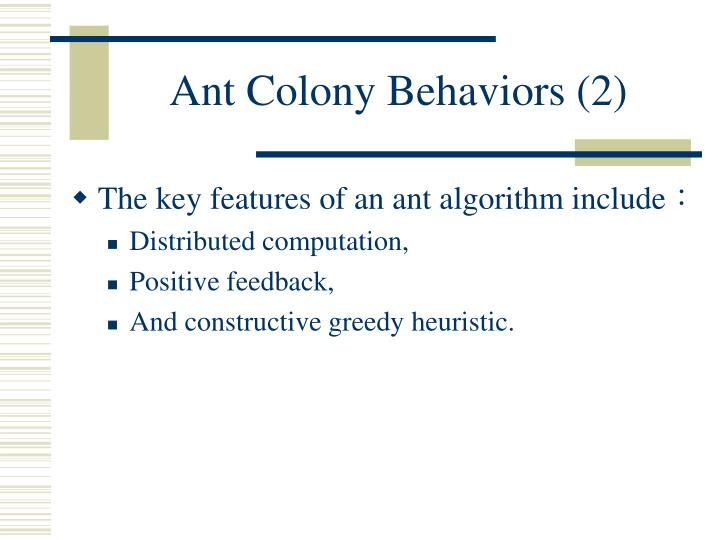 Ant Colony Behaviors (2)