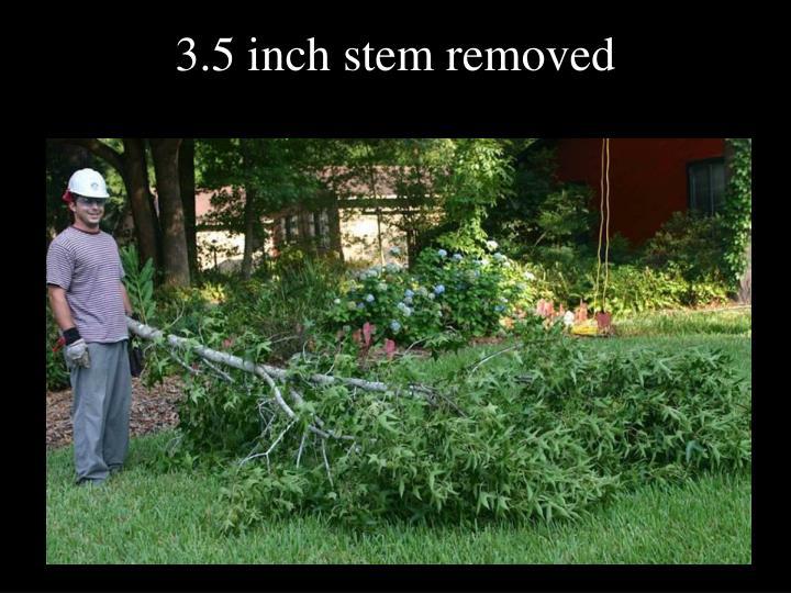 3.5 inch stem removed