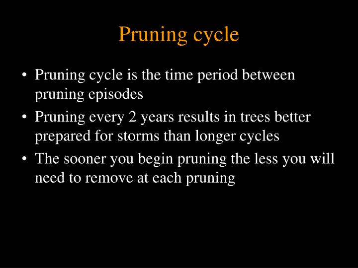 Pruning cycle