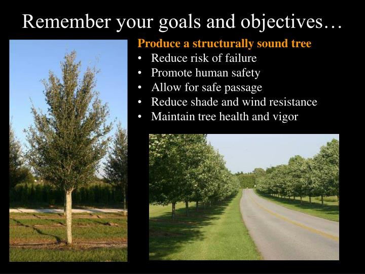 Remember your goals and objectives…