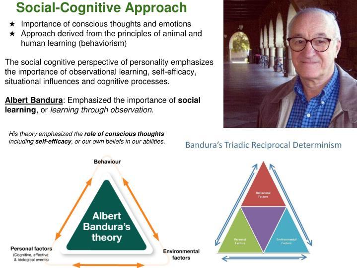 Social-Cognitive Approach