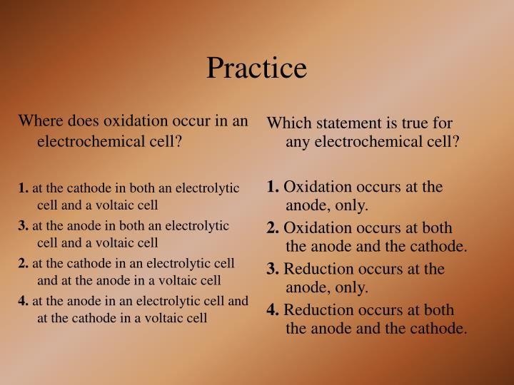 Where does oxidation occur in an electrochemical cell?