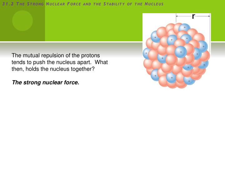31.2 The Strong Nuclear Force and the Stability of the Nucleus