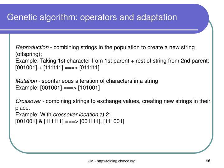 Genetic algorithm: operators and adaptation