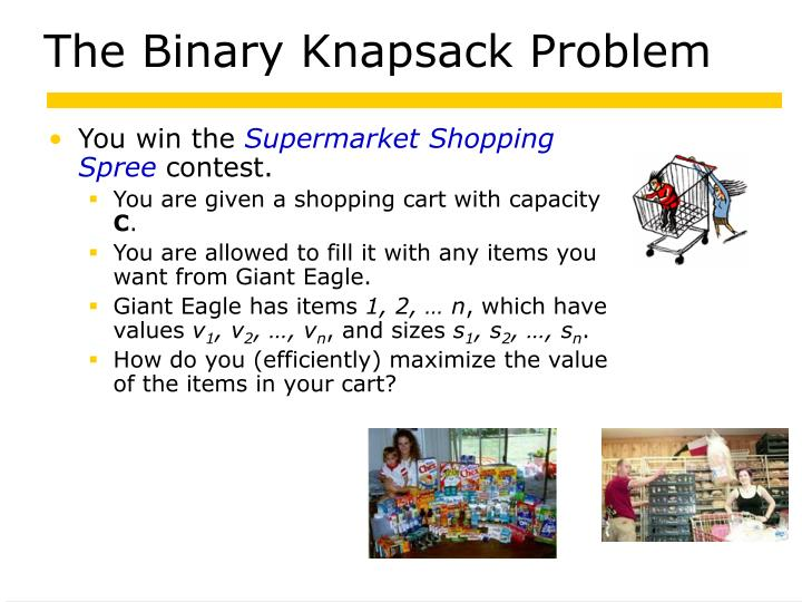 The Binary Knapsack Problem