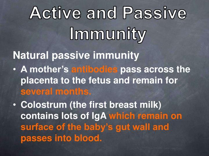 Active and Passive Immunity