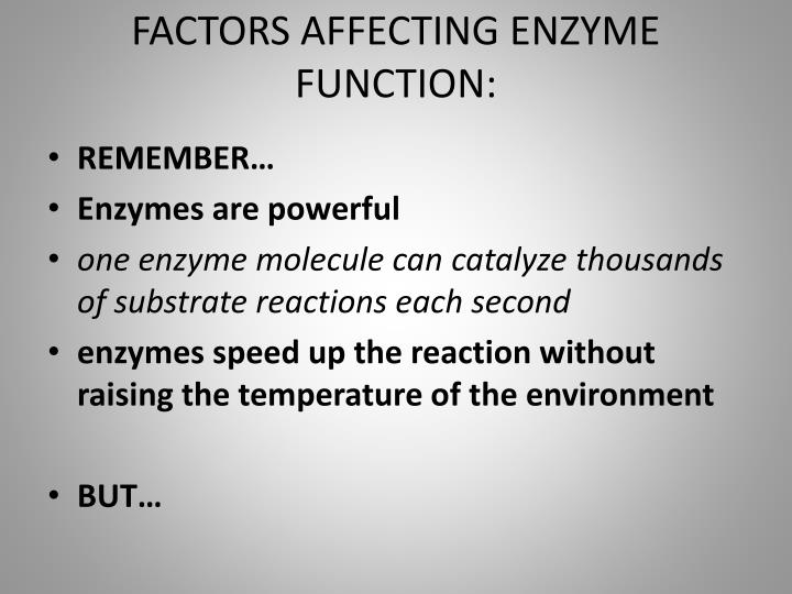 FACTORS AFFECTING ENZYME FUNCTION: