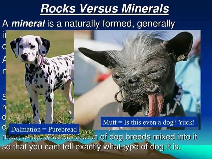 Rocks Versus Minerals