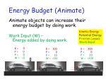 energy budget animate